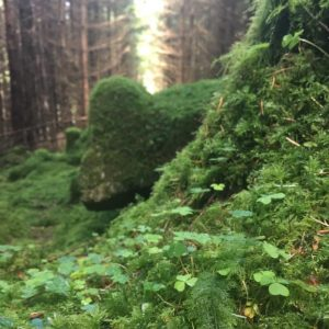 Connemara Marble Shamrock